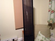 Martin Logan Vantage hybrid ESLs for sale